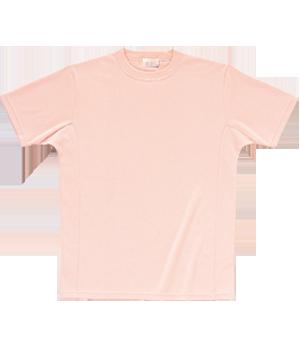 PT317 マイクロメッシュTシャツ(男女兼用)